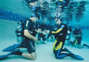 Композиционные особенности формирования центра подводного плавания