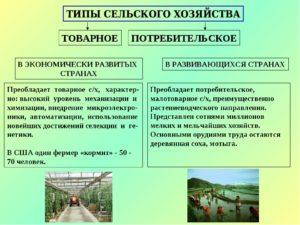 Мировое сельское хозяйство