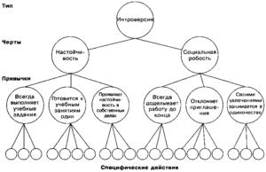 Структура личности и поведенческие типы