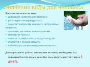 Значение воды для организмов