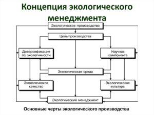 Общие понятия экологического менеджмента