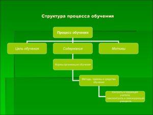 Структура процесса обучения