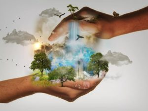 Экология природы