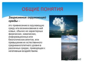 Определение загрязнения природной среды