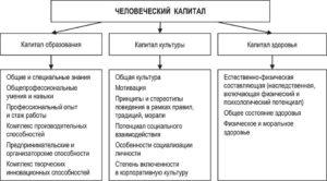 Человеческий капитал: понятие и показатели