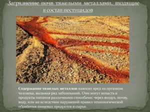 Загрязнение почвы ядохимикатами и патология животных
