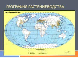 География растениеводства