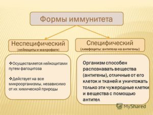 Формы иммунитета