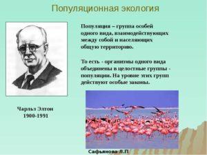 Популяционная экология
