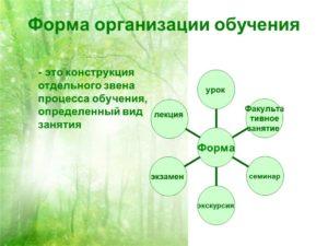 Формы организации процесса обучения