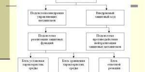Реферат Система защиты от несанкционированного копирования