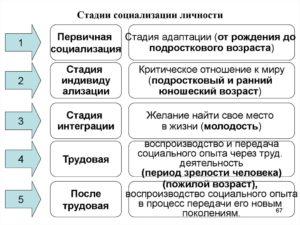 Социализация личности, ее этапы и формы