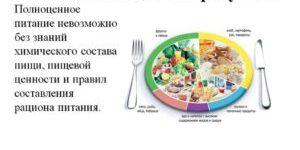 Краткая характеристика состава пищевых продуктов