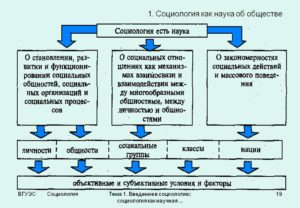 Чем занимается социология? Несколько примеров